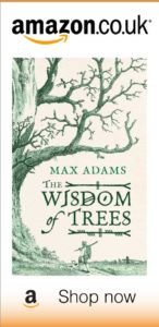 Purchase Wisdom of Trees